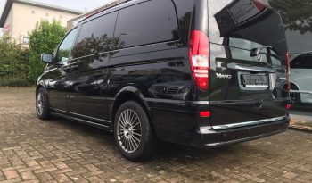 Mercedes Viano full